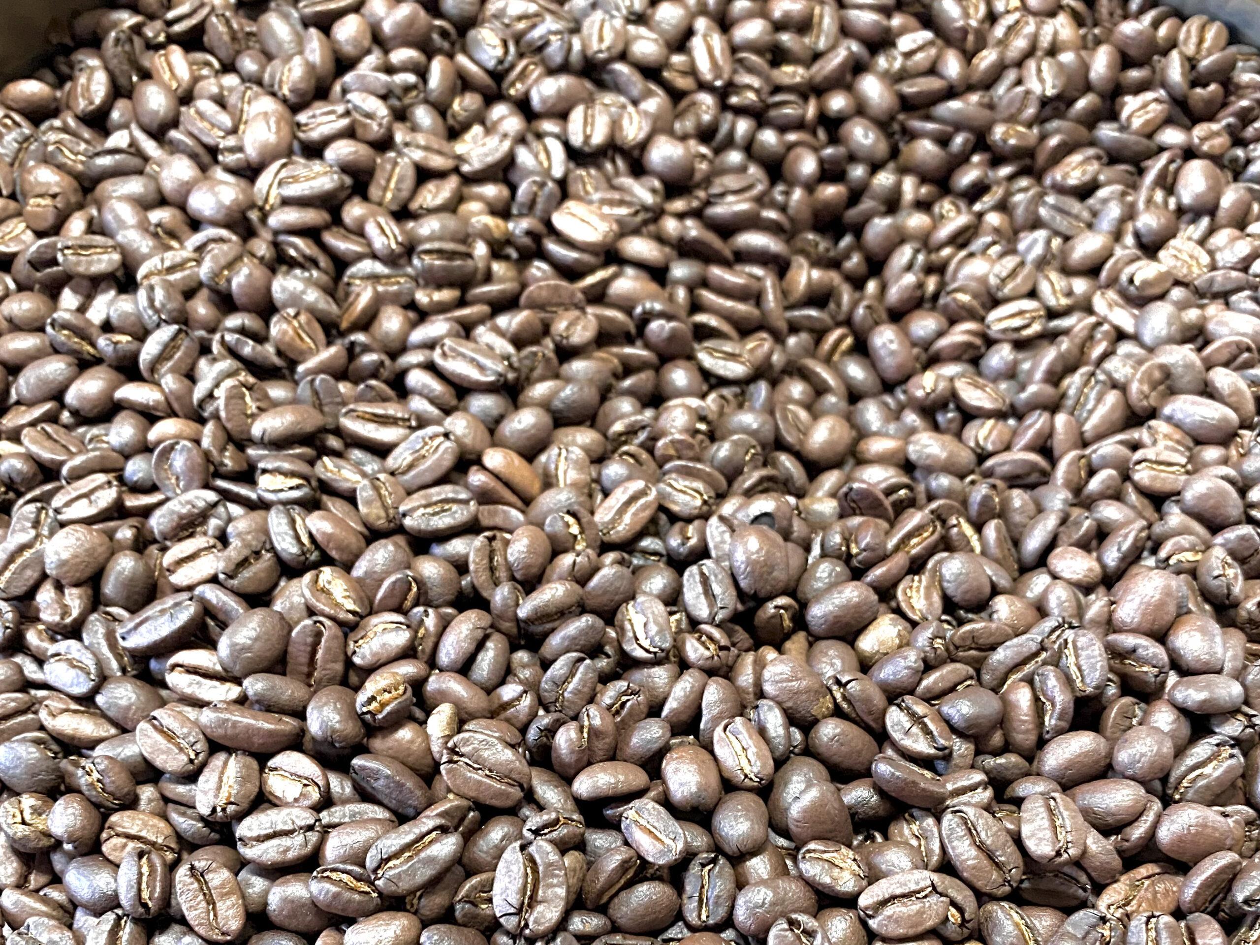 """コーヒーをおいしく飲むための鉄則②《""""おいしいコーヒー豆""""とは?》"""